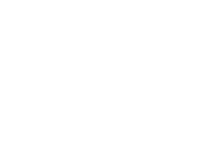 Icon Sportrecht